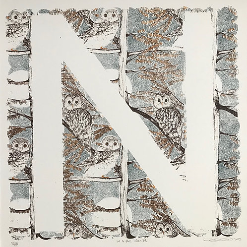 N is for Nightowl