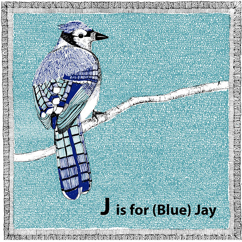 J is for (blue) Jay