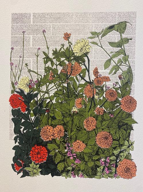 Dahlia flower Bed, Tatton Park