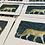Thumbnail: Little big cat - Leopard