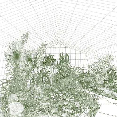 Greenhouse-Cacti