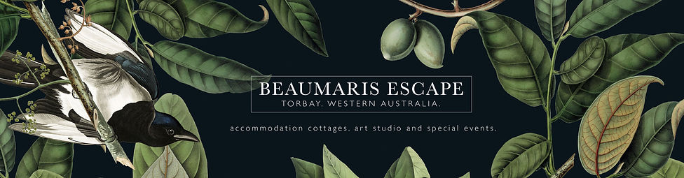Beaumaris Website Header.jpg