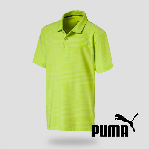 Pounce Ashton Polo Jr Acid Lime (JR)