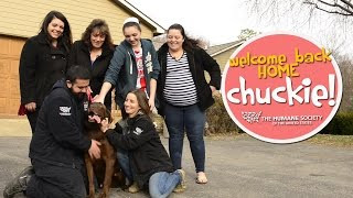 Lost Dog Rescued & Reunited with Family