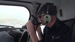 Texas Harvey flooding helicopter cattle survey