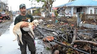 HSI: Heartwarming Rescue Stories from the Philippines