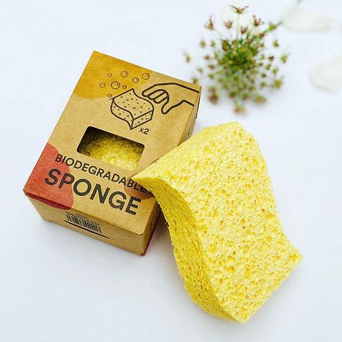 Biodegradable Sponges - Pack of 2