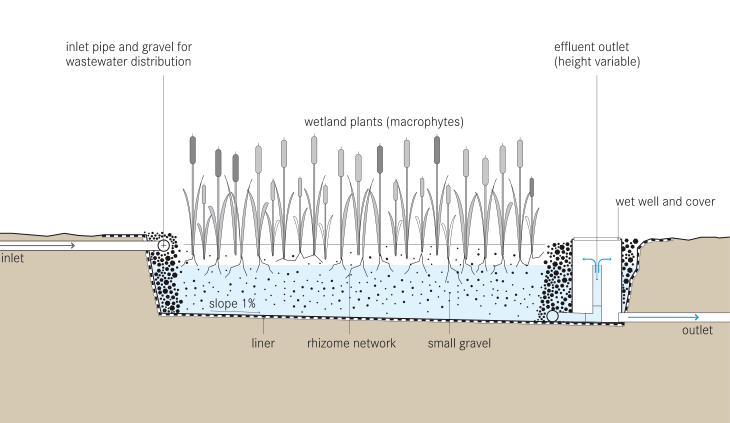 A diagram of a vertical flow constructed wetland for a greywater system