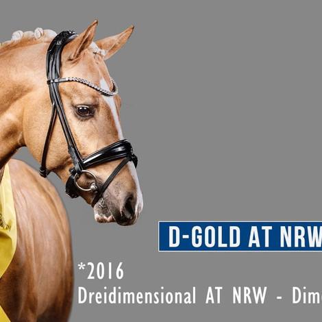 D-GOLD AT NRW Vidéo