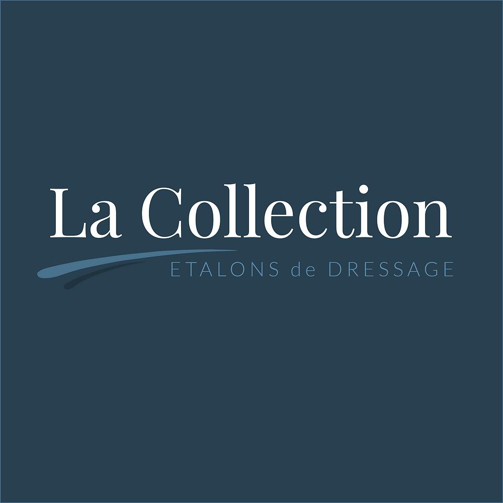 La Collection, Etalons de Dressage, catalogue chevaux et poneys