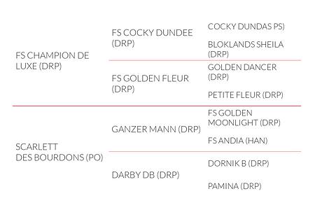 Origines Bailey's Alizay (FS Champion de Luxe x Ganzer Mann)