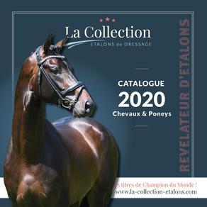 Le catalogue 2020 est en ligne !