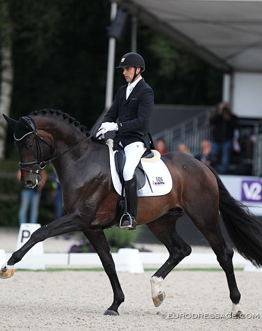 Jovian, champion du monde des 5 ans 2019 à Ermelo, distribué en France par La Collection, étalons de dressage