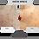 Thumbnail: FILLOSHINE GFP PG 10.5 for professional use