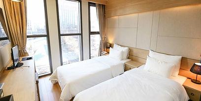 Standard Twin Room-Hotel Atti