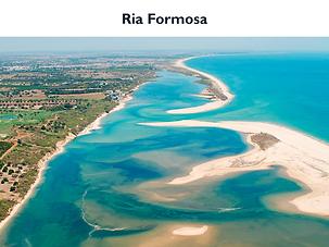 RiaFormosa.png