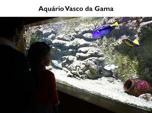 AquarioVascoDaGama.png
