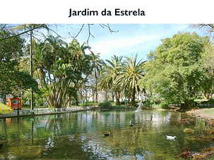 JardimEstrela.png