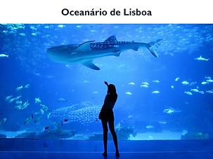 Oceanario.png