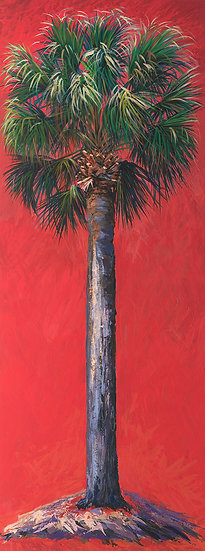 Cabbage Palm (Red)