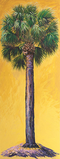Cabbage Palm (Yellow)