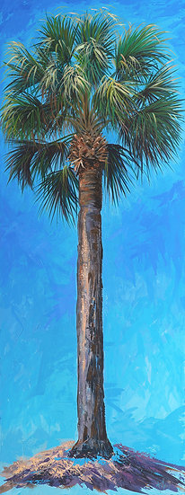 Cabbage Palm (Blue)