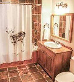 Ground Level Bathroom 3