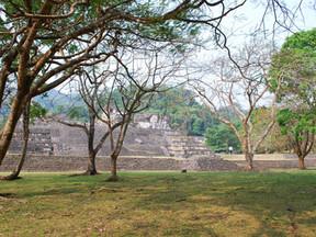 Palenque National Park
