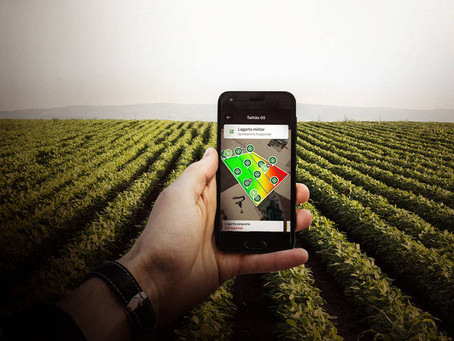 Syngenta escolhe o Brasil para lançar plataforma global de tecnologias e serviços digitais