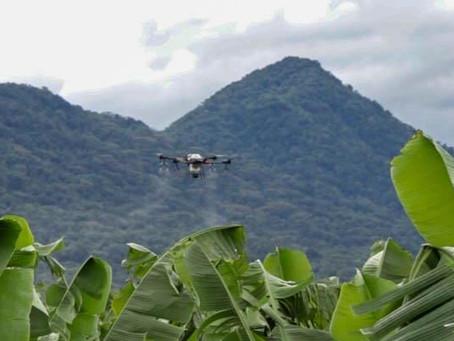 Drones para pulverização são a bola da vez no Agro