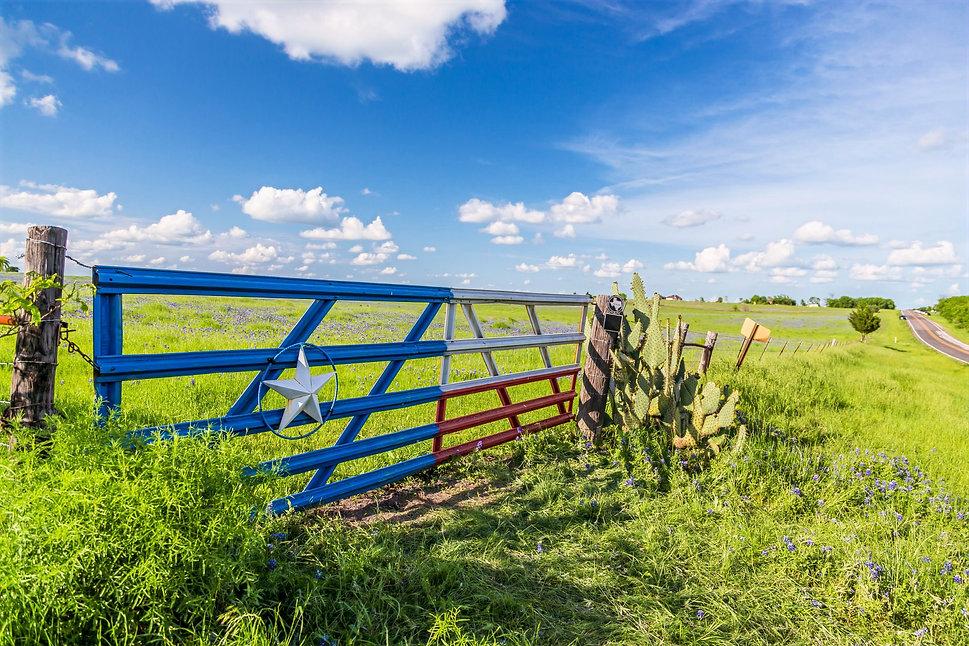 Texas Gate.jpg