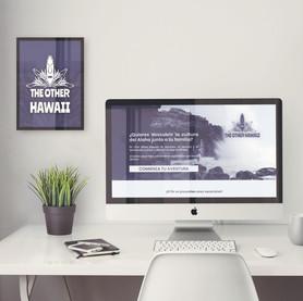 Banner y creación de recursos gráficos para web, THE OTHER HAWAII