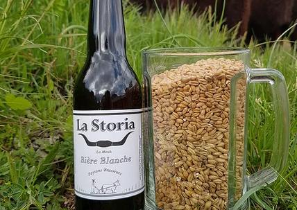 La storia bière