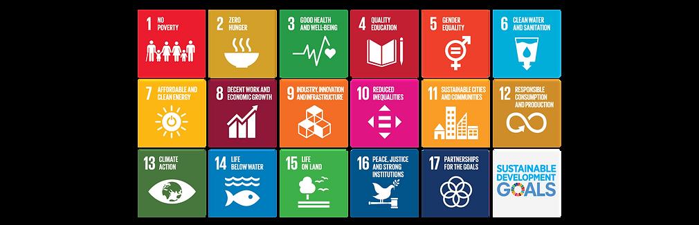 2018-07-06-SDGs.png