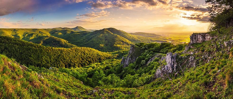 © Tomas Sereda - Fotolia.com.jpg