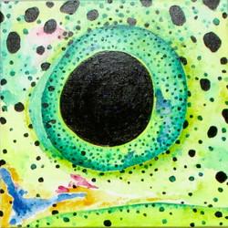 Trout Eye4#
