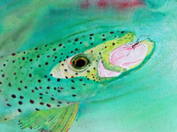 Trout Rising 1#