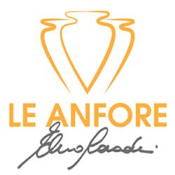 LeAnfore_VinSomnia