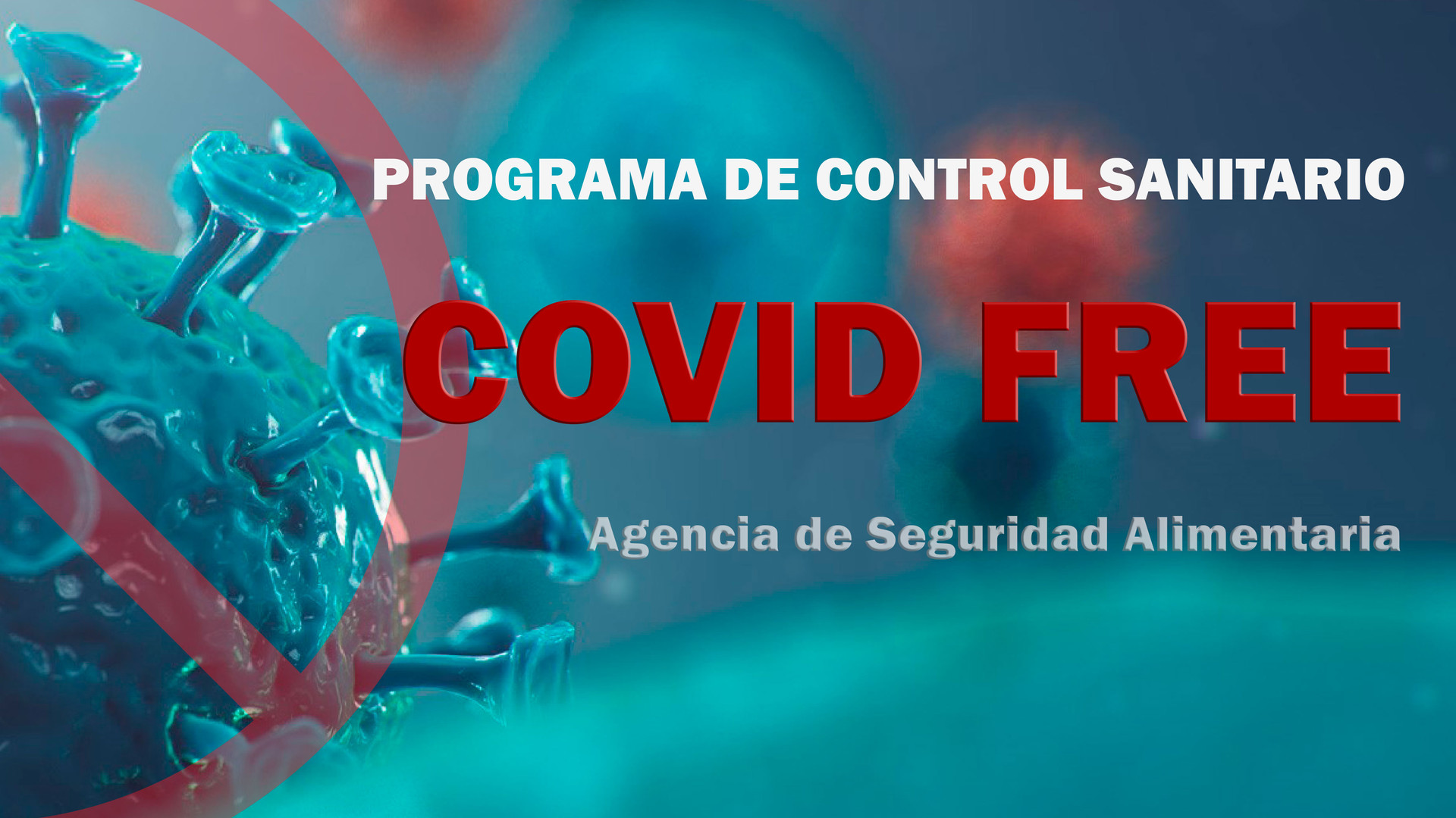 COVID-FREE169.jpg