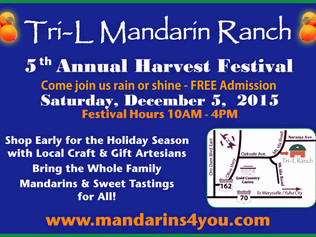 Join us for our 5th Annual Harvest Festival