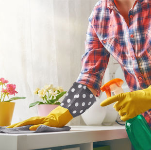 products cleaning_311x309.jpg