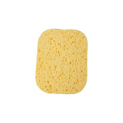 EcoLogical Pop-up Sponges 6pk