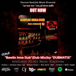 Bawlin (Dubmix) Poster