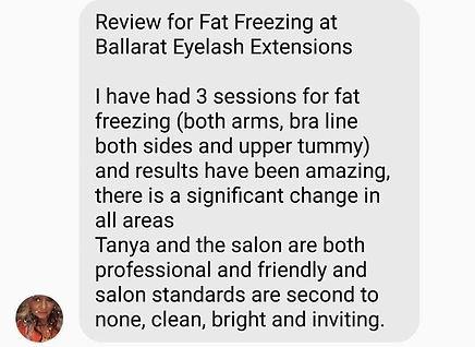 fat freeze review