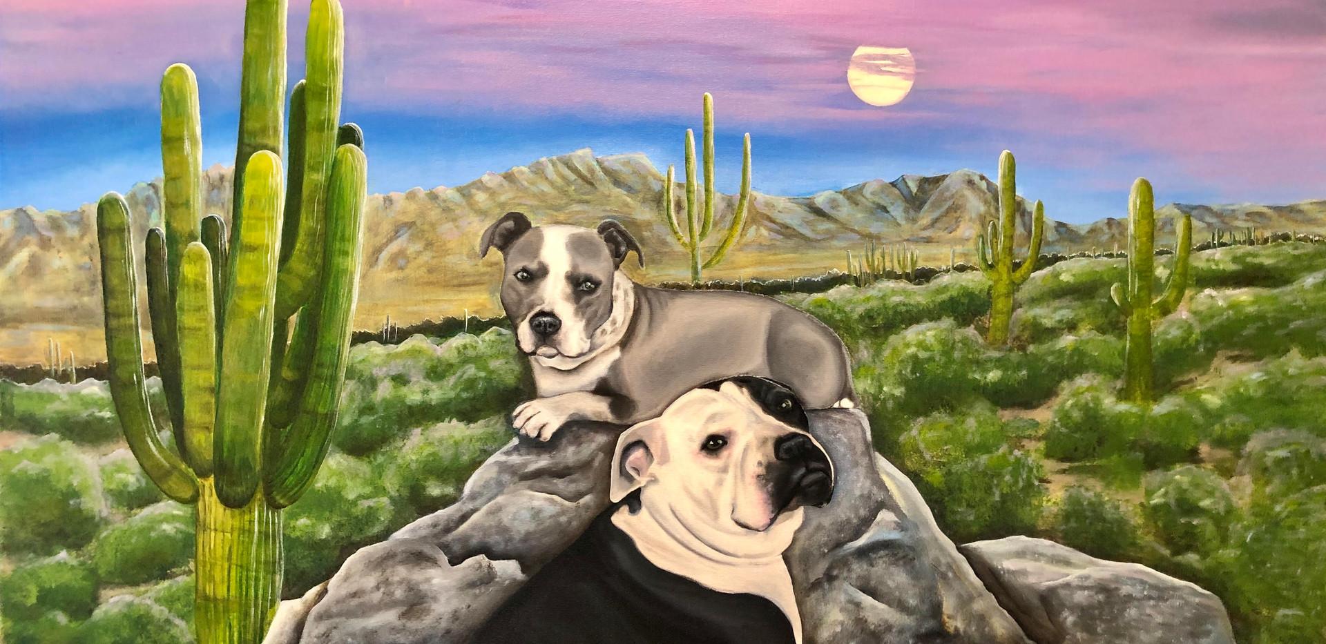 Desert Moon Pet Portrait