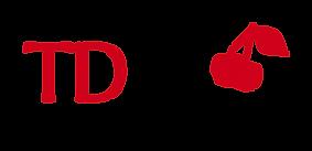 Logo agence TD Style de conseil en image