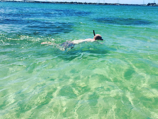 Snorkeling around the key!