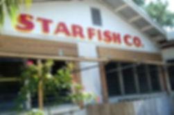 Star%20fish_edited.jpg
