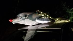 Christmas on Siesta Key