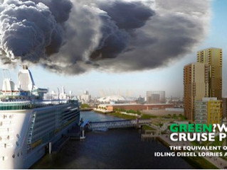 Legal Challenge to the Dirty Cruise Port